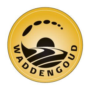 Waddengoud