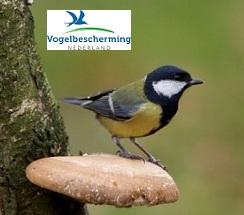 De vogelbescherming trakteert